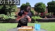 Дай да ям за 100 долара пица - The 100 14-inch Pizza Challenge I did it twice