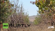 Syria: Army battle Jabhat al-Nusra close to Golan Heights