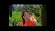 Още един на Sridevi от Sherni