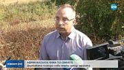 В България няма огнище на африканска чума по свинете