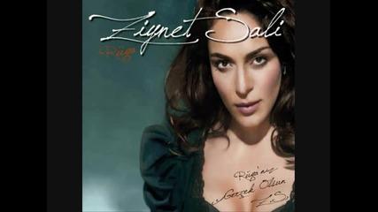 Ziynet Sali - Ruya (remix)