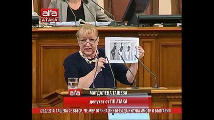Магдалена Ташева се вбеси, че Мвр отрича Янк Бери да купува имоти в България. Тв Alfa 28.02.2014г.