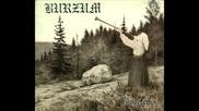 Burzum - Jesus Tod (превод)