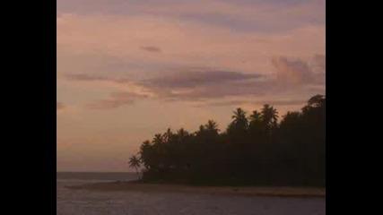 Relaxin The Fiji Islands