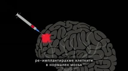 Мозъкът може би е в състояние да се възстановява сам - с малко помощ