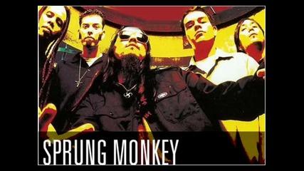 Sprung Monkey - American Made