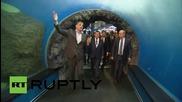 Русия: Путин инспектира аквариум на остров Руски