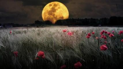 Glenn Miller -лунна светлина -серенада