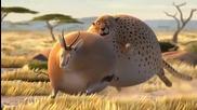Смях с дебелите животни. Как щяха да изглеждат животните ако ядяха в Макдоналдс