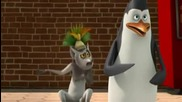 The Penguins of Madagascar - Friend in a box