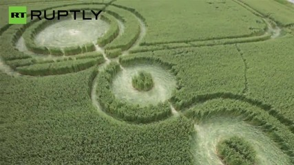 Mysterious Crop Circles in Russia's Adygea Seen from the Sky