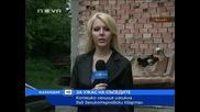 Котешко селище изникна за ужас на съседите във Великотърновски квартал