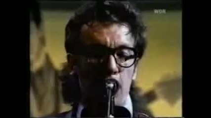 Elvis Costello - the Beat