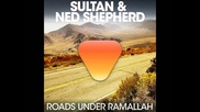 Sultan & Ned Shepard - Roads Under Ramallah Original Mix