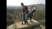 На козела в Айтос