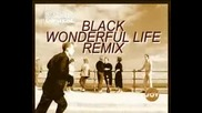 Black - Wonderful Life remix