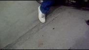 Belovec - - Bercho zapalva gumata
