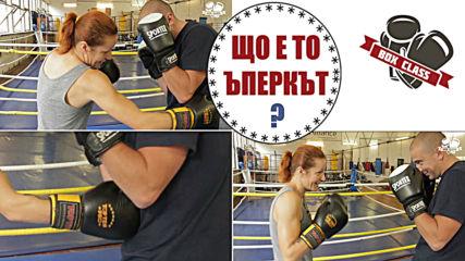 Най-използваният удар в кик бокса - Uppercut
