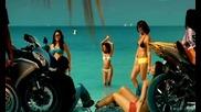 Hq Shaggy Feat. Gary Nesta Pine - Fly High