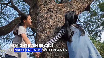 Imagine plants could talk