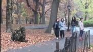 Храст плаши хората - Скрита камера - Смях