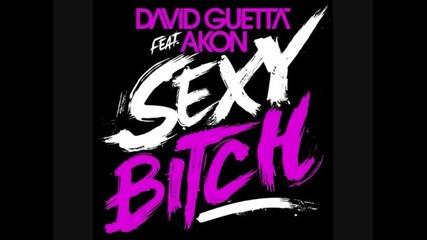 David Guetta Ft. Akon & Kid Cudi - Sexy Day N Night Bitch