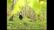володя стоянов - песни