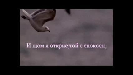 Сродна душа - Таня Мезева
