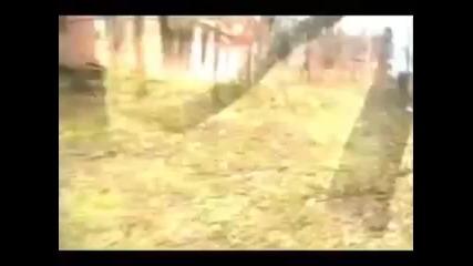 От това куче никой не може да избяга!!parkour
