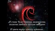 Чудо - Бианка Габровска