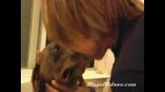 Момче Духа В Носа На Кучето