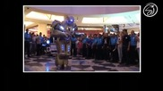 The Robot Show