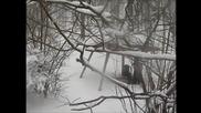 Природен Парк Сините Камъни, Зима