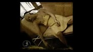 Sopor Aeternus - La Chambre d'echo - Full Album 2004