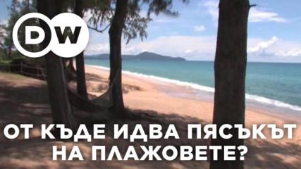 От къде идва пясъкът на плажовете?
