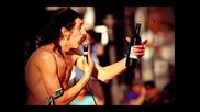 Gogol Bordello - Alcohol
