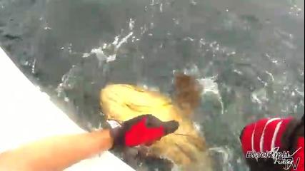 в морето за чудовище !!!
