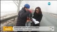 Изгнили тополи застрашават трафика по Ботевградско шосе