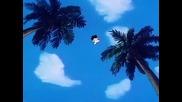 Dragon Ball - 030 English Dub Hq