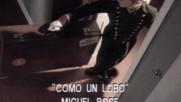 Miguel Bose - Como Un Lobo (Оfficial video)