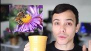 Невероятни факти за растенията!