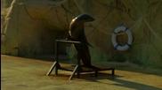 """Шоу на морски лъвове (""""Без багаж"""", Тунис #11)"""