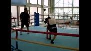 Олимпийски отбор по бокс на олимпядата в Кореа