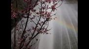 Пролет - Релаксираща музика