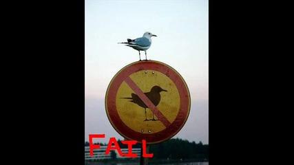 Смешни снимки :d