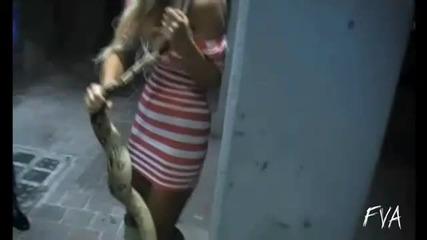 Змията знае какво да ухапи - С М Я Х !