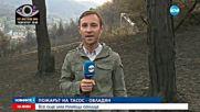 УКРОТЕНА СТИХИЯ: Локализираха пожара на Тасос