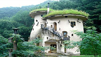 Невероятни градини намиращи се на покриви