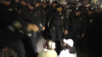 USA: 16 anti-Trump protesters arrested in NYC