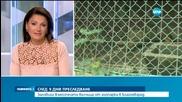 Хванаха избягалата от зоопарка в Благоевград вълчица